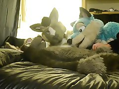 fursuit 1