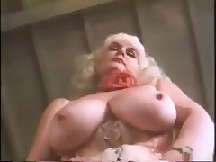Pleasure Film 1629 - Busen 16