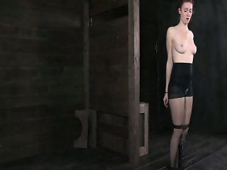 Whipped Bound and Boxed 1