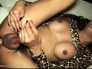 Ladyboy And Swallow Fat Dick