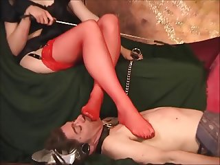 Bowed to her red nyloned legs, licking her shoes