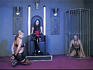 Mistress dominating a couple