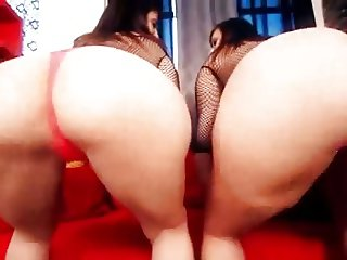 Big Booty Busty Bitches 1