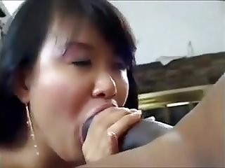 Chubby Asian sucking and fucking