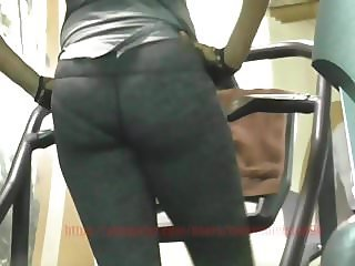 Ass In Gray Tights