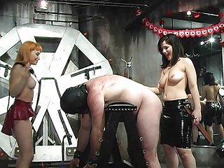 Hot mistresses spanking bonded guy