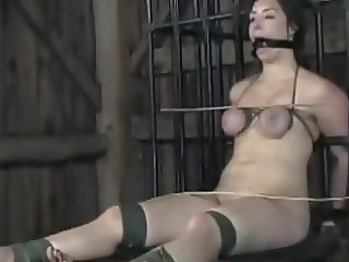 Brunette bound and dominated