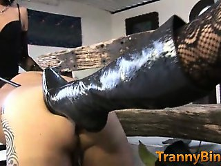 Shemale Dommes Destroy a Man