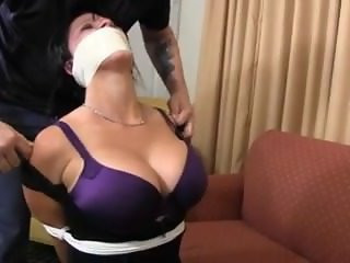 Kitten gagged