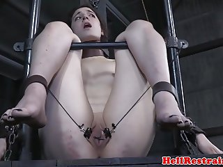 Collared slave pussyclamped while restrained