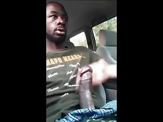 Sucking the Black Cock in the Car