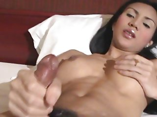 Asian Ladyboy Strokers