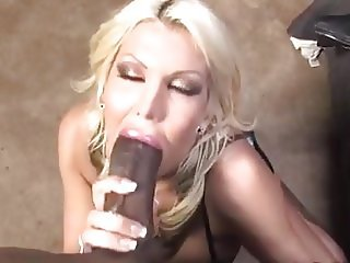 Bimbo Milf Michelle Sucking Big Black Cock HD