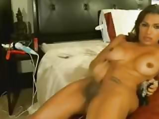 Real Tranny - Big cock, tits Shemale jerks off