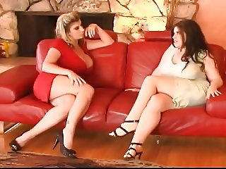 Catfight on the sofa