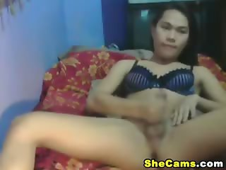 Horny Shemale Gets Wild and Jerks