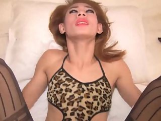 Sizzling ladyboy sucks fat dick
