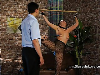 Sex, Pain and Humiliation.