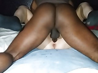 butterfly loves bbc