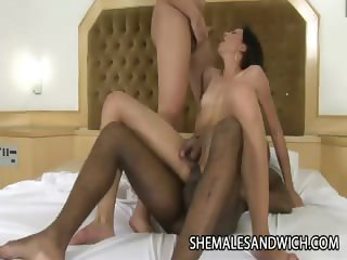 Dany Alencar And Angelic Campos - Two Hot Shemales Topping A Helpless Guy