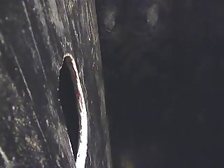 BACK IN THE DAY GLORYHOLE FUCKING