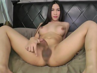 ts solo masturbation amateur compilation