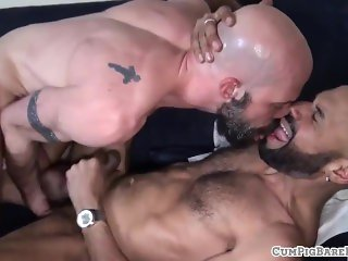 Bald bears assfucking doggystyle and raw