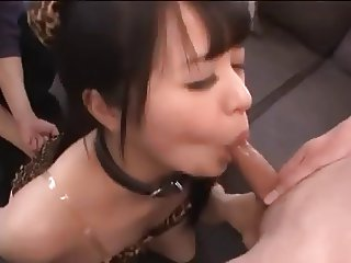Pet Girl Fellatio