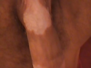 Stroke penis - cock to ejaculation - closeup