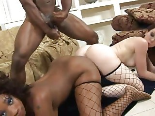 Interracial Romp