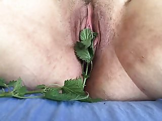 Making Love with nettles